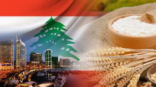 Lübnanlı firma buğday nişastası satın alacak