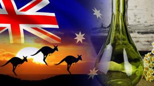 Avustralyalı müşteri özel tasarım cam bardak satın alacak