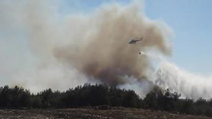 Çanakkale'de orman yangını söndürüldü
