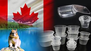 Kanadalı tüccar plastik kutular ithal etmek istiyor