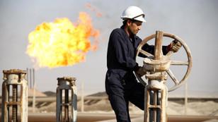Novak: OPEC'te ocak ayına kadar karar çıkmaz