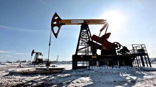 'Küresel enerji talebi yüzde 30 artacak'