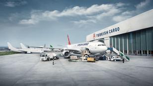 Turkish Cargo'ya ödül