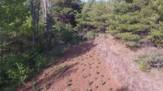 Drone destekli Hint keneviri operasyonu
