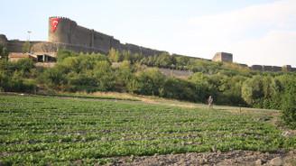 Hevsel Bahçeleri'nde 8 bin yıldır tarım yapılıyor