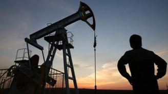 Temmuzda en fazla petrol kazandırdı