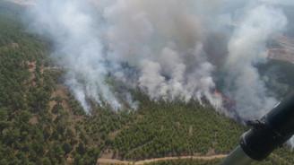 Denizli'deki orman yangınında yaklaşık 10 hektar alan yandı