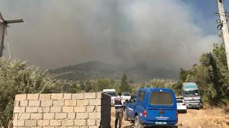 Antalya'da ormanlık alanda yangın çıktı