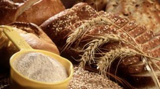 'Buğdayda alım fiyatı maliyetlerin üzerinde olmalı'