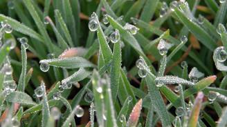 Meteorolojiden 'buzlanma ve don' uyarısı