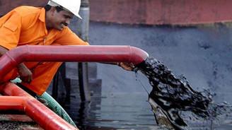 Düşük petrol fiyatları onlara yarıyor
