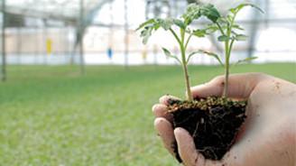Organik tarıma büyük ilgi