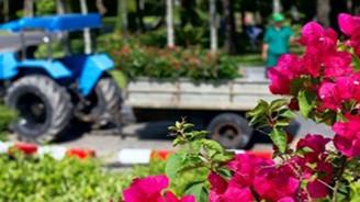 Çiçek üssü Bayındır'ın çimlendirme serası projesine imar engeli