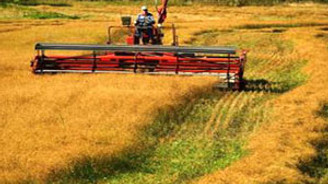 Tarım Bakanlığı: Haksız ödeme yapılmadı