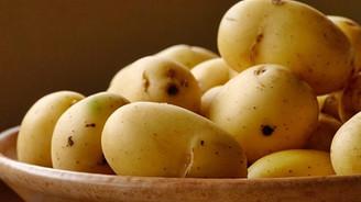 Patateste hasat başladı, fiyatlar düşüyor