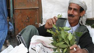 El Kaide'den bitki yasağı