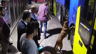Fenerbahçe otobüsünde arama