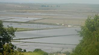 Hamzadere Barajı Trakya'nın tarımsal umudu oldu