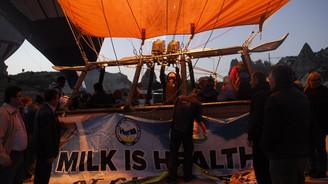 Balonlar 'Dünya Süt Günü' için havalandı