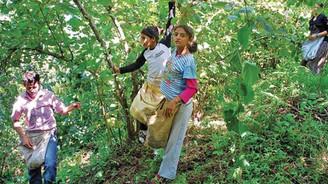 Çocuk işçi çalıştıranlara 1.478 lira ceza