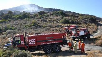 Datça'da 4 hektar zeytinlik alan yandı