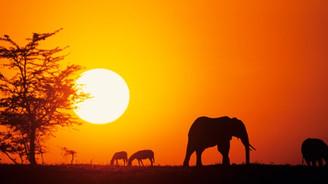 İşte yatırım için en cazip ilk 10 Afrika ülkesi!