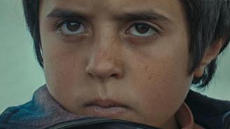 Türkiye'nin 51 yıllık karşılıksız Oscar aşkı