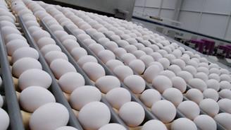 Angola'ya yumurta satarken AB'ye satamamak acı