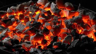 Akademisyenlerden çağrı: Türkiye kömüre dur demeli
