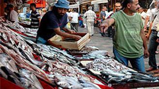 Balıkçılık sezonu kapanıyor