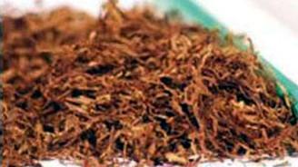 Tütünlerin açık artırma başlangıç fiyatları belirlendi