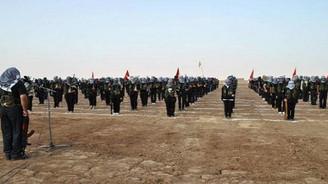 'Rusya, Suriye Kürtlerine desteğini artırabilir'