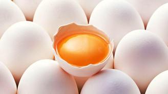 Yumurta üretiminde rekor