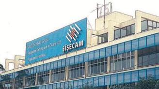 Şişecam'ın net kârı 376 milyon lira