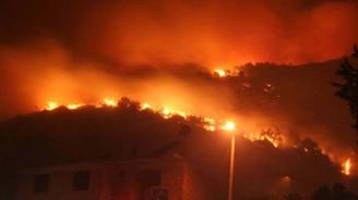 Yangında 40 hektar alan zarar gördü
