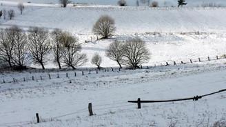 Kar yağışları, tarım alanlarında kuraklığa karşı sigorta oldu