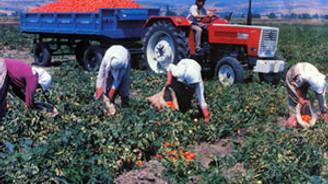 'Enflasyonun sorumlusu çiftçi değil'