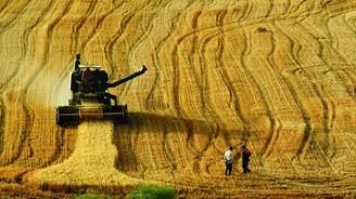 Ulusal gıda güvencesi sistemleri iyileştiriliyor
