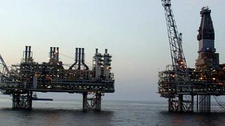Bulunan doğalgazın değeri 100 milyar dolar