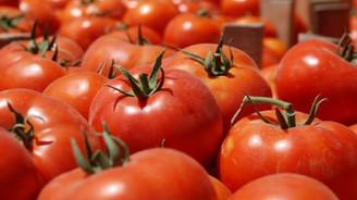 İthalat yasağı sebze-meyveyi ucuzlattı