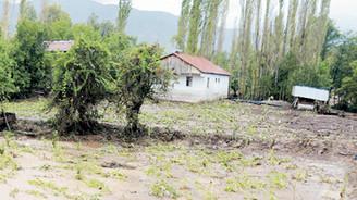 Aşırı yağışlar tarımı vurdu