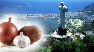Brezilya'dan tarım ürünleri ithal talebi
