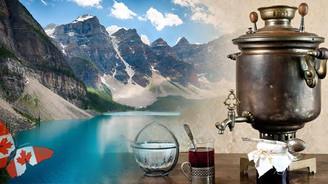 Kanada'nın çayı Türk semaverlerinde demlenecek