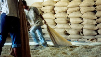 Global kahve üretim tahmini düştü