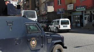 Bitlis'te terör operasyonu:10 gözaltı
