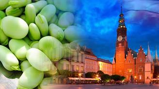 Polonya konserve gıdalar ithal etmek istiyor