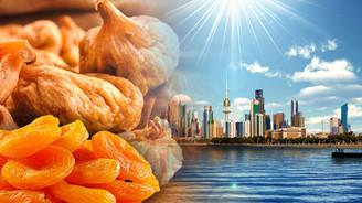 Kuru incir ve kayısımıza Kuveyt'ten talep var