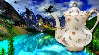 Kanada çayını Türk demliklerde demleyecek