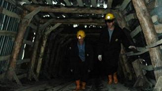 Bakanlık 2 altın madenini ihaleye çıkarıyor