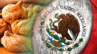 Meksika kuru inciri Türkiye'den ithal edecek